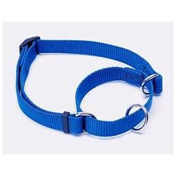 Coastal Pet Products DCP6907BLU Nylon No Slip Adjustable Collar