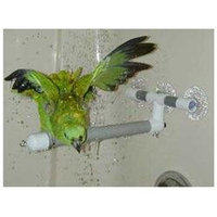 Topdawg Pet Supplies Pollys Pet Products Window or Shower Bird Perch Size Large (Blue)