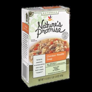 Nature's Promise Naturals Chicken Noodle Soup