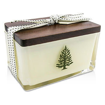 Thymes Frasier Fir Poured 2 Wick Holiday Candle
