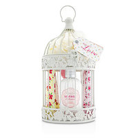 Heathcote & Ivory Vintage Collection Enchanted Birdcage With Assorted Pampering Treats