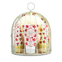 Healthcote & Ivory Vintage Mimosa & Pomegranate Miniature Birdcage with Bath & Body Essentials 4pcs