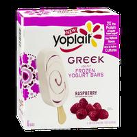 Yoplait® Greek Raspberry Low Fat Frozen Yogurt Bars