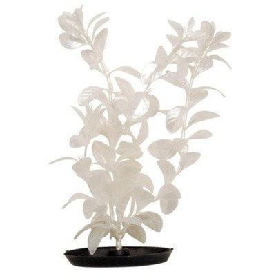 Hagen Marina Pearlscaper Red Ludwigia Plant, White, 12-Inch