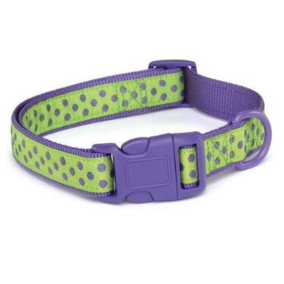 Zack & Zoey Nylon Brite Polka Dot Dog Neck Collar, 18-26-Inch, Ultra Violet