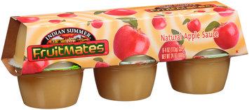 Indian Summer® Fruitmates™ Natural Apple Sauce 6-4 oz. Cups