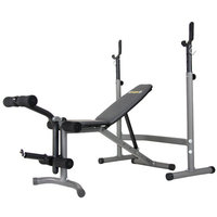 Hupa International Inc Body Champ BCB3890 Olympic Width Weight Bench System