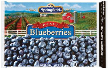 Springfield Fancy  Blueberries 16 Oz Bag