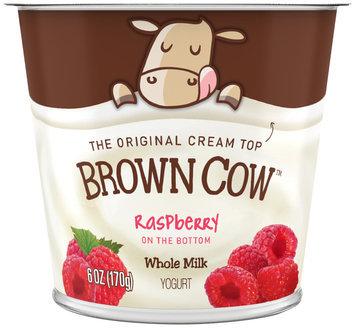 Brown Cow Raspberry on the Bottom Cream Top Yogurt 6 oz. Cup