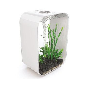 Biorb Life Aquarium Tank Size: 60
