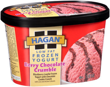 Hagan® Low Fat Frozen Yogurt Berry Chocolate Crumble 1.5 qt. Tub