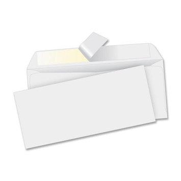 Business Source Business Envelope (500 Per Box)