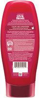 Garnier® Whole Blends™ Argan Oil & Cranberry Extracts Color Care Conditioner 12.5 fl. oz. Bottle