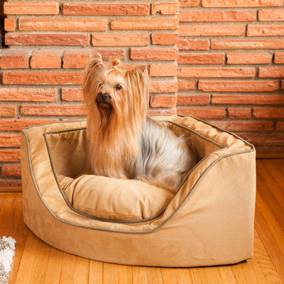 Snoozer Pink Microsuede Dog Bed 23095