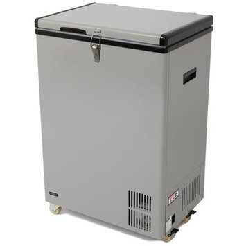Whynter 3.17 Cu. Ft. Portable Refrigerator with Freezer Color: Gray
