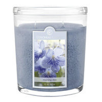Colonial Candle Spring 2015 Morning Dew 22 oz. Jar Candle