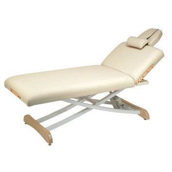 Customcraftworks Elegance Lift Back Electric Massage Table Color: Burgundy