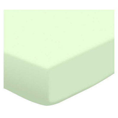 Stwd Soft Jersey Knit Portable Mini Fitted Crib Sheet Color: Mint