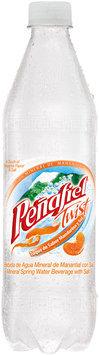 Penafiel® Mineral Spring Water Twist Mandarina 20.3 fl oz. Bottle