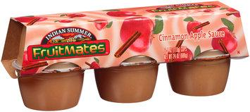 Indian Summer® Fruitmates™ Cinnamon Apple Sauce 6-4 oz. Cups