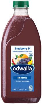 Odwalla® Blueberry B™ Fruit Smoothie
