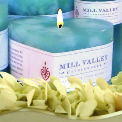 Mill Valley Candleworks Floral Seaside Scented Novelty Candle Size: 3