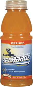 R.W. Knudsen Recharge® Orange Sports Drink 16 oz Bottle