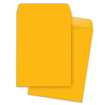 Business Source Specialty Envelopes Catalog Envelopes, Plain