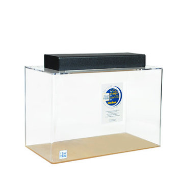 Clearforlife Rectangle Acrylic Aquarium Tank Color: Clear, Size: 20