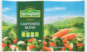 Springfield® Cantonese Blend 16 oz. Bag