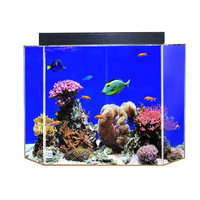 Advance Aqua Tanks Uniquarium Rectangular Aquarium Sapphire Blue, Size: 90-Gal (48W x 18D x 24H in.)