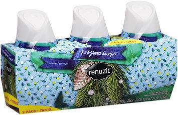 Renuzit® Evergreen Escape™ Gel Air Freshener