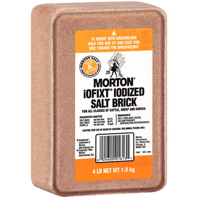 Morton® iOFIXT® Iodized Salt 4 lb. Brick