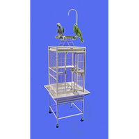 A & E Cage Co Small Play Top Bird Cage Color: Stainless Steel