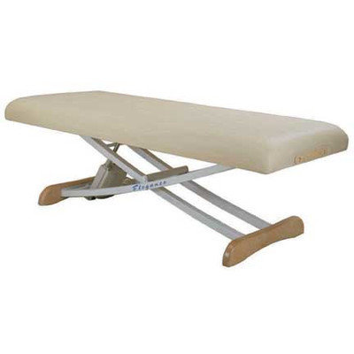 Customcraftworks Elegance Basic Electric Massage Table Color: Agate Blue