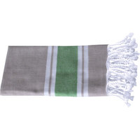 Antiochia Myndos Hand Towel Color: Beige Lime
