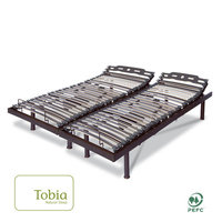 Tobia Natural Sleep Premium Electric T Motion Bed with Massage, Bluetooth and Wireless Remote Size: 24.5
