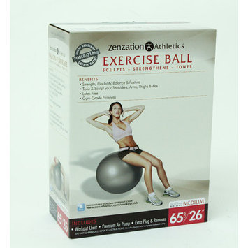 Trimax Sports WTE10004BL Zenzation 65cm Exrcise Ball Bk
