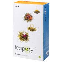 Teaposy TP11-QT Quartet Set of Four Assorted Tea Balls