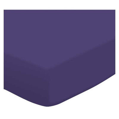 Stwd Jersey Knit Travel Crib Light Fitted Sheet Color: Purple