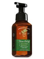 Bath & Body Works Aromatherapy EUCALYPTUS & SPEARMINT Gentle Foaming Hand Soap