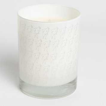 Acadian Candle Rolling in Grass Jar Candle Color: Silver Metallic