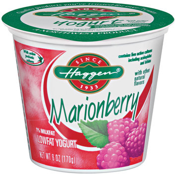 Haggen Marionberry Lowfat Yogurt 6 Oz Cup