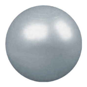 Yoga Direct Weighted Pilates Ball Silver