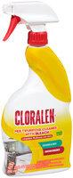 Cloralen® Multipurpose Cleaner with Bleach 22 fl oz. Spray Bottle