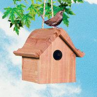 Perky Pet PP50301 Perky Pet Wren House
