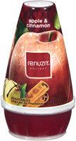 Renuzit Holiday Apple & Cinnamon Long Last Adjustable Air Freshener 7.5 Oz Plastic Container