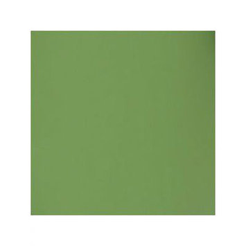Bazzill T5-5150 12 x 12 Smoothies Cardstock - Palm Leaf