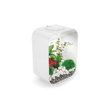 Biorb 4 Gallon Life Aquarium Tank Color: White