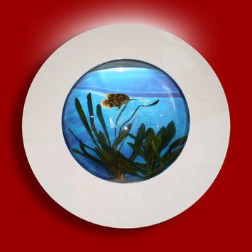 Vandue Corporation Aussie 2.75 Gallon Wall Mounted Aquarium Tank Color: White